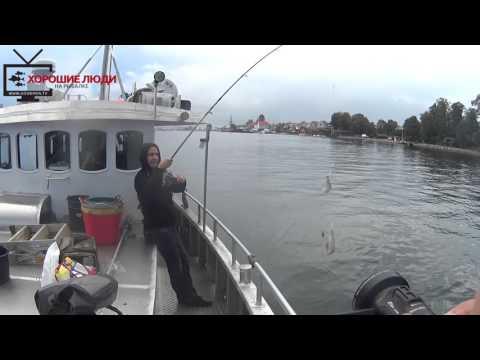 отчеты морская рыбалка