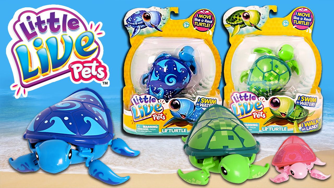Turtle Toys For Boys : Little live pets lil turtle toys review kids play o