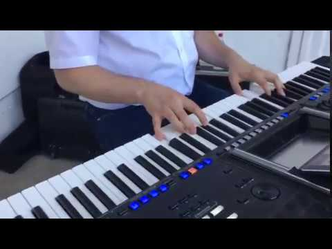 Summer lounge Musik Piano Keyboard Genos Livemusiker für Feste