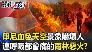 印尼「血色天空」末日景象嚇壞人 連呼吸都會痛的雨林惡火!? 【關鍵時刻】20190924-6 馬西屏