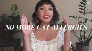 5 WAYS TO DEAL WITH PET ALLERGIES  | Hellajam