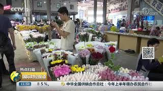 [国际财经报道]热点扫描 降雨加高温 昆明鲜切花出现今年以来最低价| CCTV财经