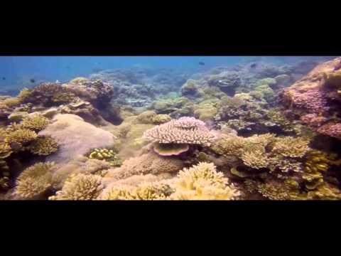 Documentary Film of Subi Kecil Island, Indonesia (Cinema)