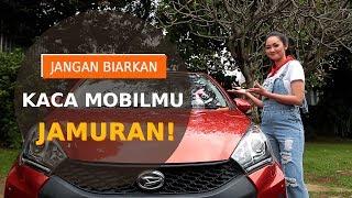 SAHABAT CERDIK | Cara Menghilangkan Jamur Pada Kaca Mobil ala Diandra Gautama
