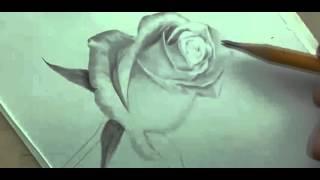 Рисуем розу карандашом | Crash ROSE #12(Рисование, как рисовать, рисовать карандашом, научиться рисовать, уроки рисования, как научиться рисовать,..., 2015-10-04T17:04:57.000Z)