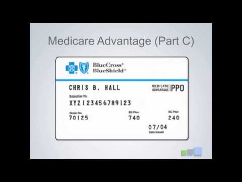 Review Of Insurance Cards