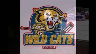 Wild Cats Ice training