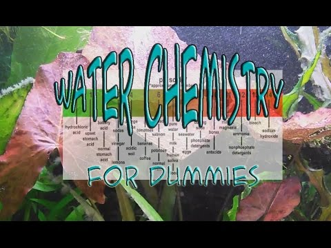 Water Chemistry 101 For Your Aquarium