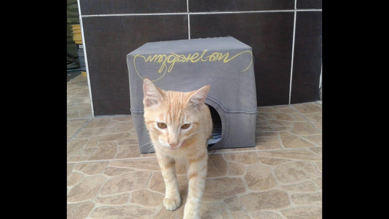 Como hacer una casita para gato youtube - Casa para gato ...