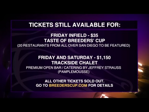 LIVE Breakfast at the Breeders' Cup with HRRN 11/2