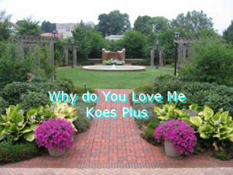 Koes Plus, Why do you love me