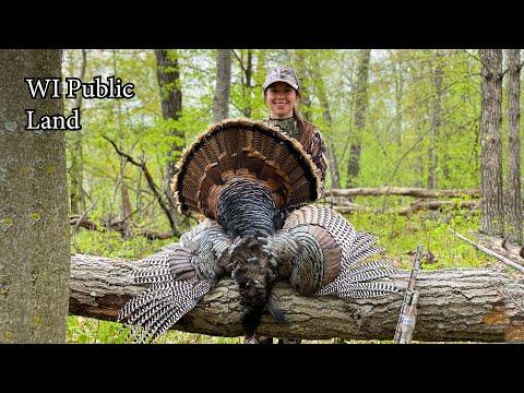 Turkey Hunt – First Public Land Bird