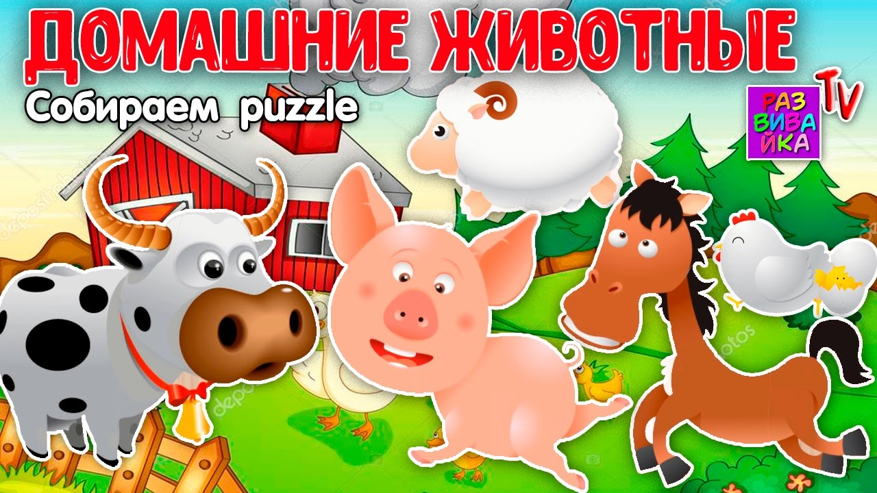 Домашние Животные для Детей | мультик домашние животные видео
