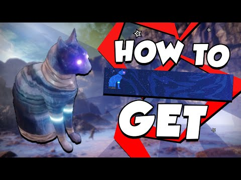 HOW TO GET THE ENNEAD EMBLEM (ALL 9 CAT LOCATIONS) | Destiny 2: Forsaken thumbnail