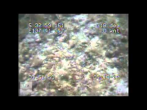 m0249 EPA Marine Aquatic Ecosystem Condition Report Northern Spencer Gulf - West of Black Pt