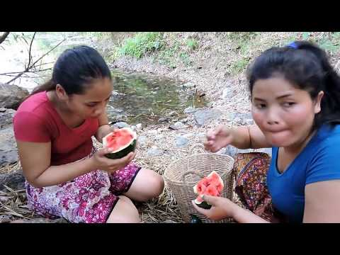Survival - Find Oatmeal Farms on the River - women Find Watermelon eating delicious