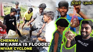 DAY AFTER NIVAR CYCLONE !! Real Flooded Area Near My Home | Chennai