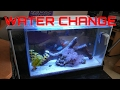 How to setup a Fluval SPEC 5 saltwater reef tank WATER CHANGE TIME