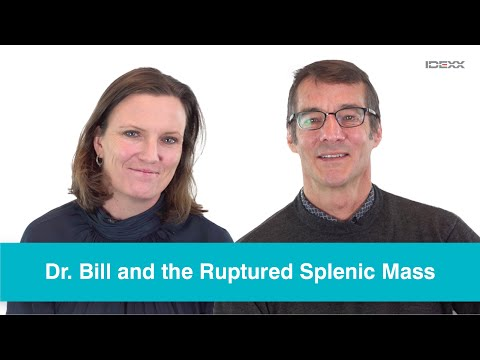 IDEXX - Dr. Bill And The Ruptured Splenic Mass - Ep. 1