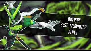 Big Papi Overwatch Best Plays