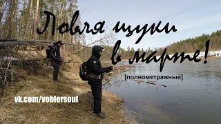 Ловля щуки на весенней реке.Мартовский спиннинг! Видео отчет от 29.03.2015г .