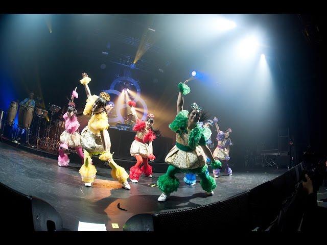 Basement Jaxx ft. Team Syachihoko - Back 2 The Wild (Japanese version)