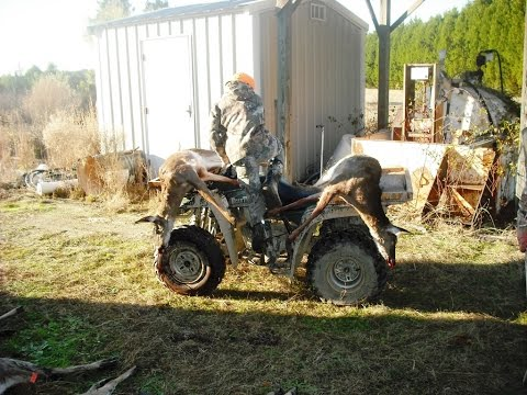 SC Deer Drives! 13 Deer Taken, Maysville Management Hunts!