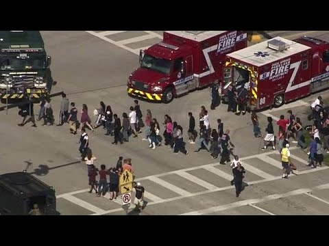Florida: At least 17 dead in high school attack