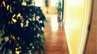 Cool Diggs Open Loft - Hardwood Floors - Beamed Ceilings - Track Lighting - Brick Exposed