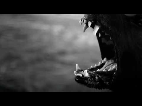 Клип Textures - Awake