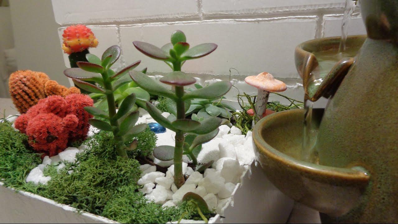 Cactus suculentas como hacer cactus y suculentas - Como construir un terrario ...