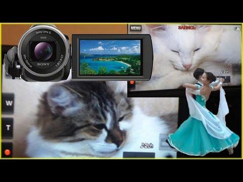 Купить Экшн-камеры Sony (Сони) в интернет-магазине