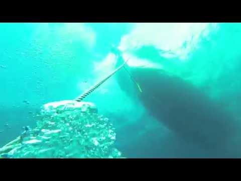 Panama City Beach Diving (Liberty Ship)
