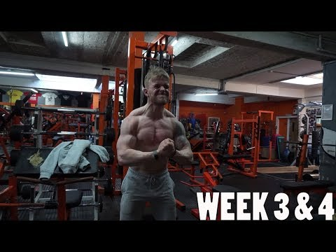 Student Bulking Update Week 3 & 4 - STEPPING UP MY GAME!