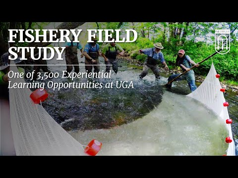 North Georgia Fishery Field Study With UGA Students