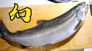 The taste of a salmon (Biwa Trout) that lives in a certain lake is amazing!【Salmon Ochazuke】