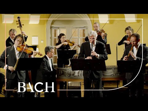 Bach - Brandenburg Concerto No. 4 in G major BWV 1049 - Sato | Netherlands Bach Society