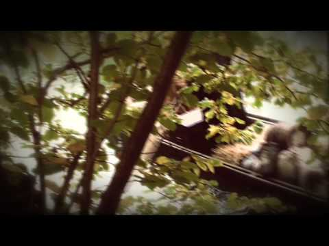HANSA-PARK - Curse of Novgorod - Trailer 1: Lake Ilmen