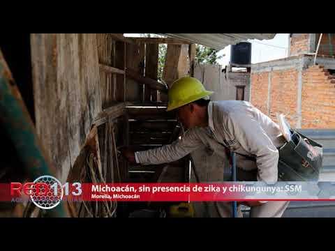 VIDEO Michoacán, sin presencia de zika y chikungunya: SSM