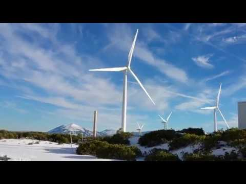 Majestic wind generators