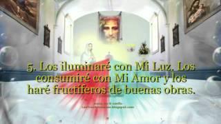Devoción a la Santa Faz de Nuestro Señor Jesucristo la moneda Celestial