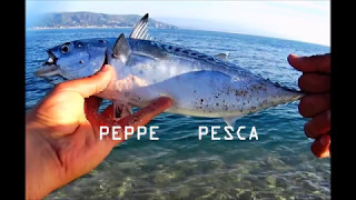 Video Spinning false albacore inshore Pt. 4 download MP3, 3GP, MP4, WEBM, AVI, FLV Desember 2017
