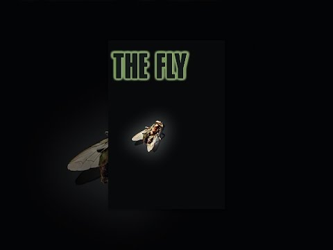 Муха цокотуха 1976 смотреть онлайн мультфильм