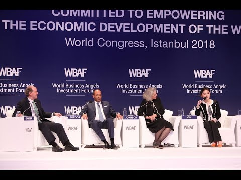 WBAF 2018 Panel: The G20 Agenda on Angel Investment and Early Stage Investment Markets