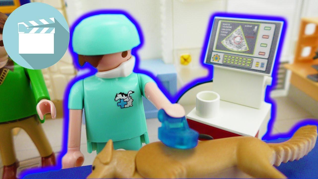 Jule Muss Zum Tierarzt Was Ist Passiert Tierarzt Geschichten