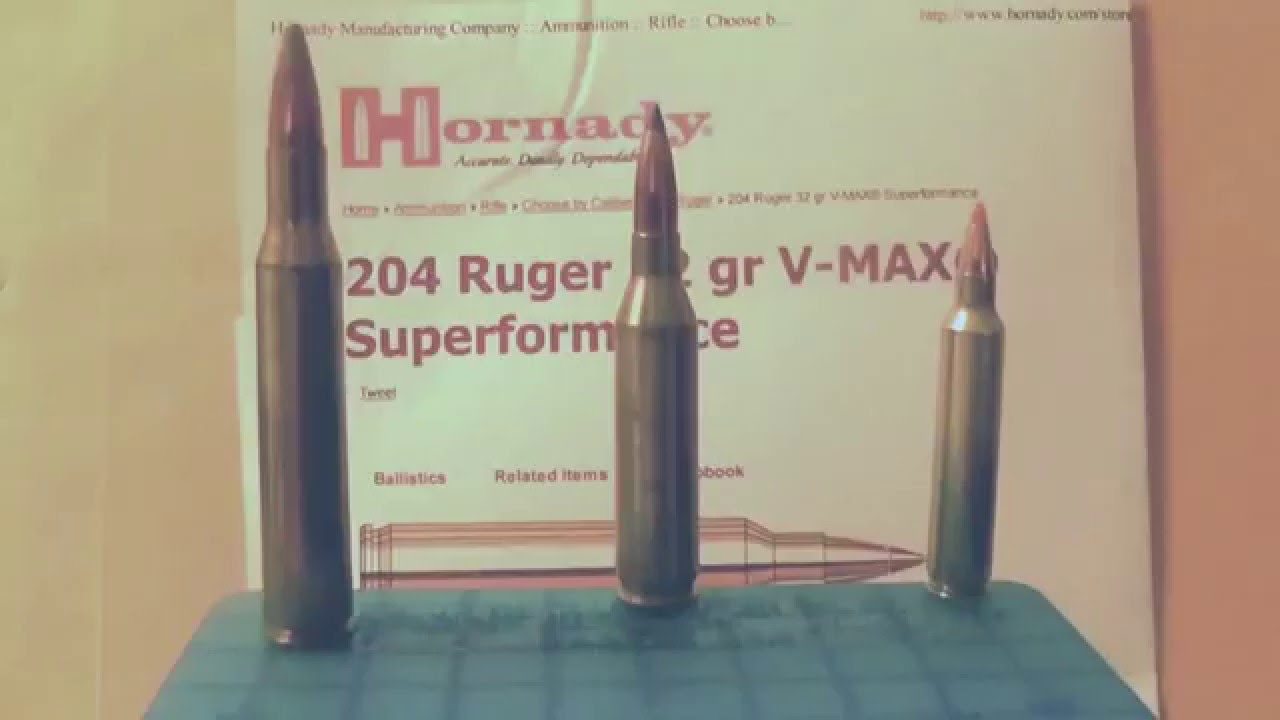H&R  204 Ruger coupled with Hornady Ammo