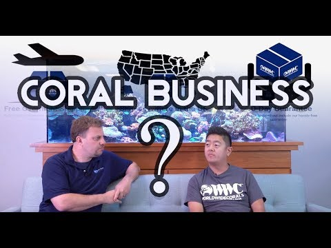 Trouble In The Coral Trade