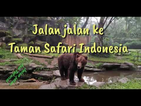 jalan-jalan-ke-taman-safari-indonesia-bogor-2018---jjtl