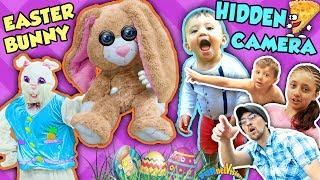 EASTER BUNNY HIDDEN CAMERA! Happy CREEPSTER Home Invader Egg Hunt FUNnel V Holiday Skit Vl