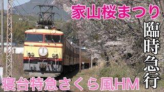 【大井川鐵道】EL臨時急行さくら号ヘッドマーク・家山駅発車